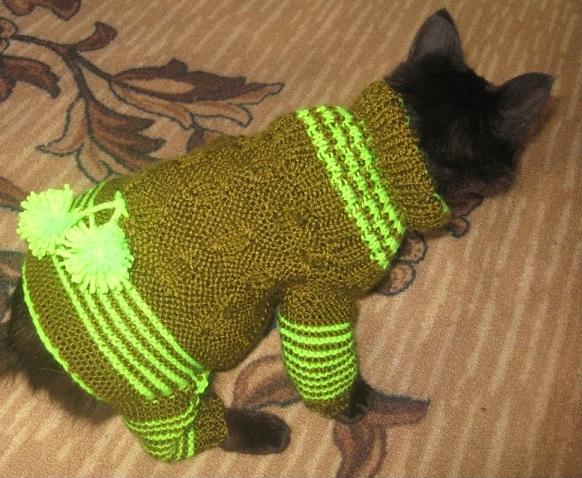 вязаная одежда для животных своими руками комбинезоны платьица и