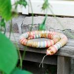 Живность: кошаки и змеи, шитые и живые