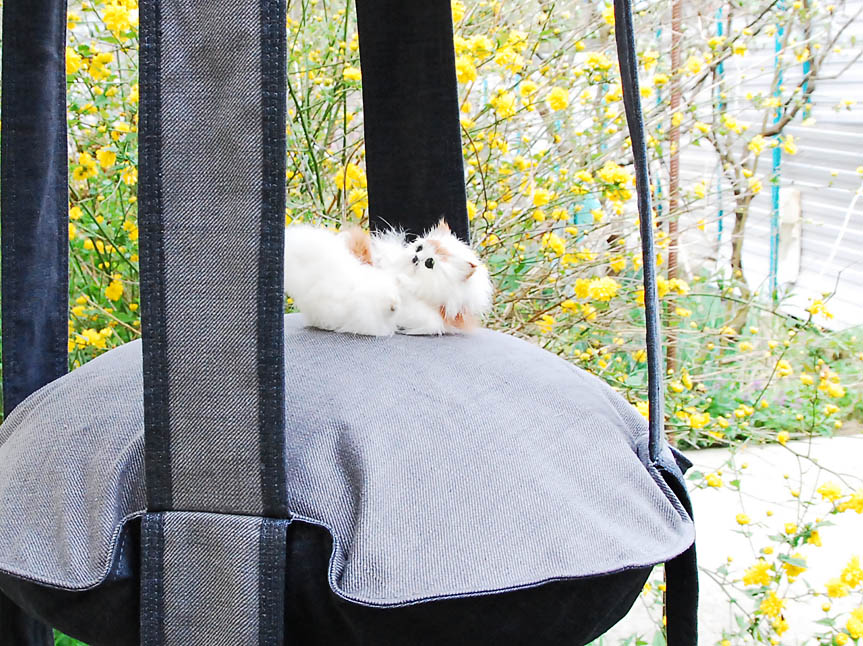 Кошка на гамаке